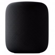 Speaker APPLE HOMEPOD Grey espacial (MQHW2Y/A)