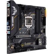 ASUS TUF GAMING B460M-PLUS: (1200) 4DDR4 HDMI DVI mATX