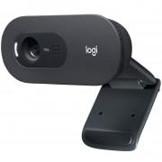 Webcam Logitech C505 HD 720p USB (960-001364)